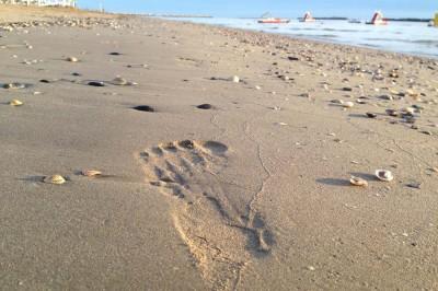 Barfussschuhe Abdruck Sand