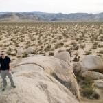 Granit – Johua Tree National Park