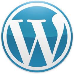 WordPress wird 10 Jahre – Danke